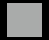 Logo Discovery_Grau